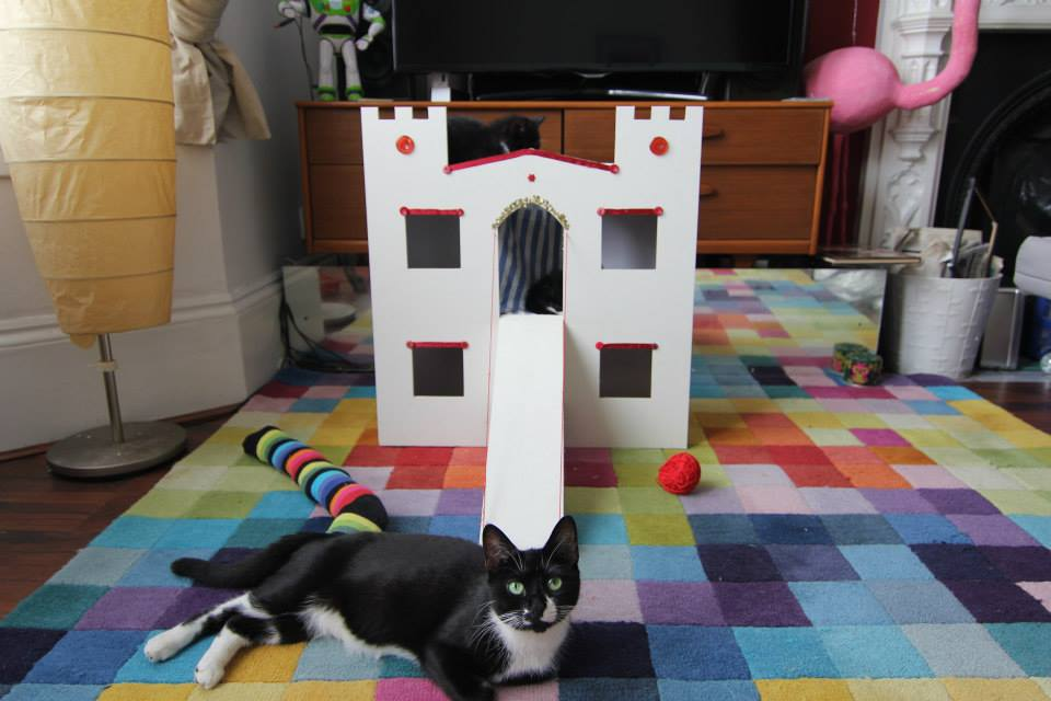 cat castle - kitten castle